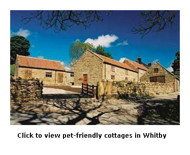 Excellent Dog Friendly Self Catering Cottages In Whitby Yorkshire Download Free Architecture Designs Licukmadebymaigaardcom