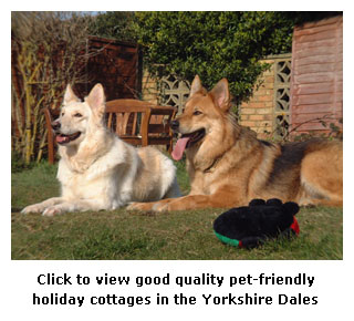 Dog Friendly Yorkshire Dales Holiday Cottages